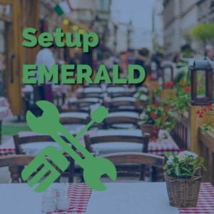 Remarketing Food - Setup Emerald